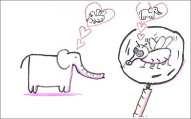 Bild mit Mücke und Elefant