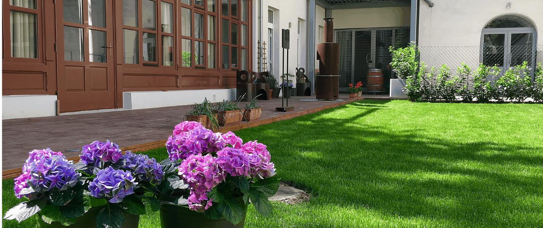 Foto: Der Garten im Verein WIR SINNd